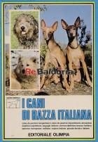 I cani di razza italiana