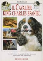 Il Cavalier King Charles Spaniel