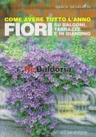Come avere tutto l'anno fiori su balconi, terrazze e in giardino