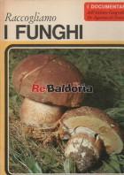 Raccogliamo I Funghi