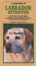 A proposito di Labrador Retriever