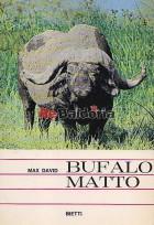 Bufalo Matto