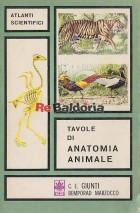 Tavole di anatomia animale