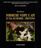 Formiche vespe e api in val di fiemme - Trentino