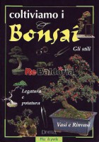 Coltiviamo i bonsai