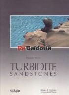 Turbidite Sandstone